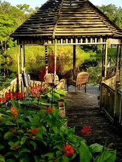 Gazebo overlooking pond with fish and turtles