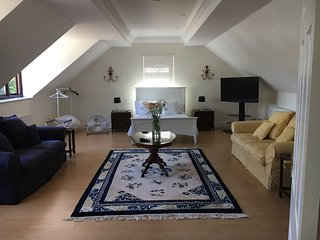 Large studio apartment. Double bed. 2 sofas,dining table, side tables 50inch LG TV,garden views