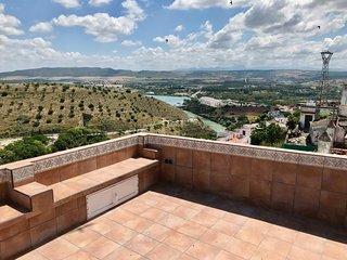 Centre historique avec terrasse et vue (12CC)