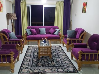 Lovely comfy flat in best area in Nasr City
