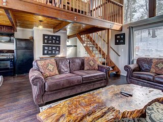 Dog-friendly ski cabin with private hot tub and plenty of fun games!