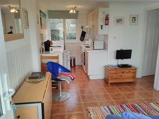 Kitchen has electric cooker , fridge and microwave.