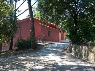 Agriturismo Poggio al Pino - appartamenti per le vacanze