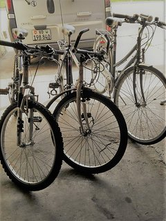 Nous mettons volontiers des vélos à votre disposition