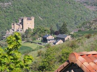 'Gite de Cabrieres' Grande maison de vacancesa l'entree des Gorges du Tarn
