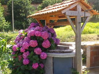 Ons/Our Kaia a wonderful holiday home close to Luso and 40 km from Coimbra