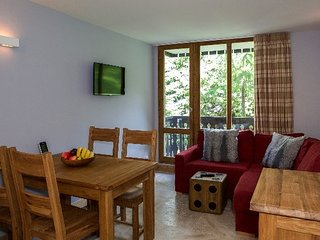 Hauts du Rogoney, lovely 2-bedroom apartment on the piste