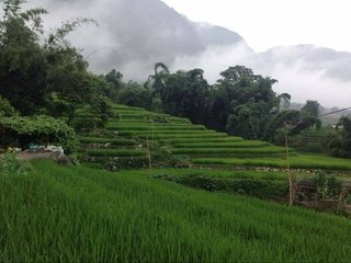 Warm home stay in Sapa