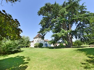 8 bedroom Chateau in Castelmoron-sur-Lot, Nouvelle-Aquitaine, France - 5657608