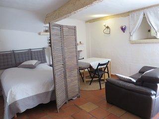 Coquet studio 2-4 personnes Centre Village Carces-Provence Verte -VAR