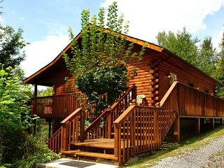 Spruce Lane Cabin ( 2 Bedroom cabin )