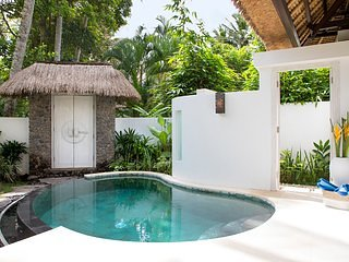 Tree Moon Luxury private pool/Ubud