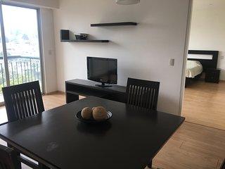 Ciudad de México Holiday Apartment 25173