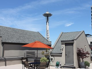 Luxury Home with Beautiful Space Needle Views!⁴
