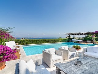 Luxury villa Akita