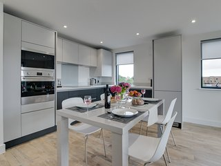 Pen Dinas Cardiff Apartment- a stone's throw from the city centre: BOW32