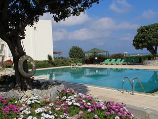 The peaceful large communal pool with spring flowers in bloom and ample  sunbeds for guests