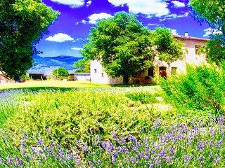 Poreta Bio Farm Suite B - Rome/1 hr 15 mins