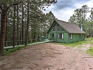 Black Hills Cabin w/ Deck near Mt. Rushmore!