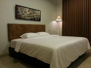 OLIVIA INN DENPASAR (Standard Double and King Room 10)