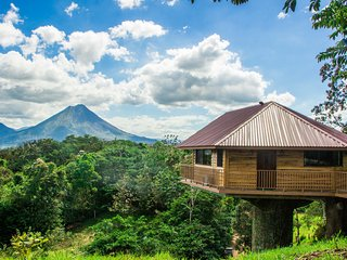 Creative Tree House with a Volcano View
