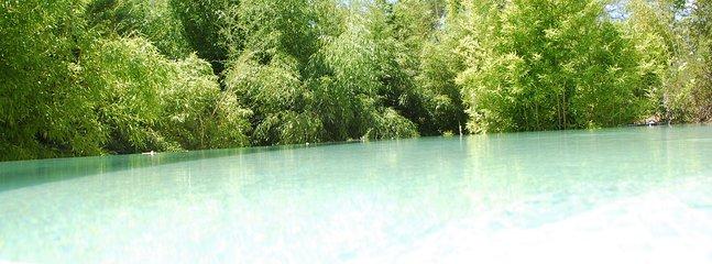 Der Pool mit Bambus