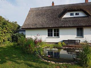 Reetdach Ferienwohnung 'Lütt' in Schaprod