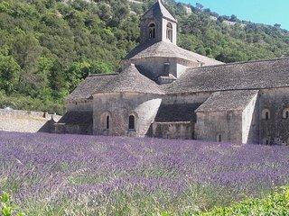 vacances au coeur de la provence,repos ou sportif pays du velo mont ventoux