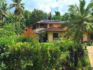 King Coconut Lodge - Ferienwohnung PALMTREE