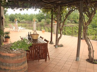Stone cottage surrounded by vineyards,Etna view,great terrace, close to Taormina