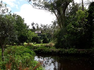Quirky Woods - The Garden Room  - at Maketu - set on lush 6 acre valley retreat