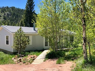 Escape to Black Bear Hollow! Secluded in a Beautiful Aspen Grove & Pet Friendly!