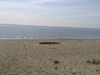 Cosy : appart 2 chambres 100m de la plage