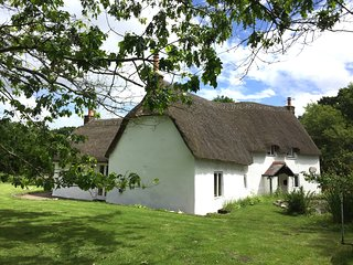Classic Old English Cottage in the Woods