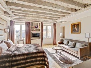 Luxury Apartment Paris Louvre