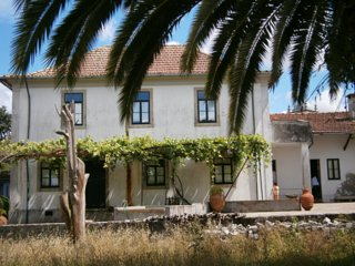 Bright rural house, 9km to the beach