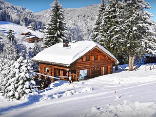 Great skiing on your doorstep - 4 star ski in ski out chalet - SnowLodge