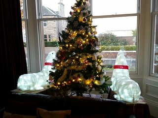 Fraser's Superb Ground Floor Apartment; For Winter and Christmas Holidays !