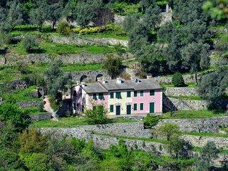 Villa Olivari - apt. il Cedro