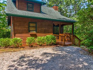 Family cabin w/wood fireplace & seasonal mountain & forest views - dogs OK!