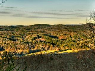 Dancing Bears- Mtn View near Blue Ridge