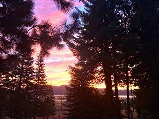 Mountain Pine Cabin - Sleeps 6 - Pet Friendly