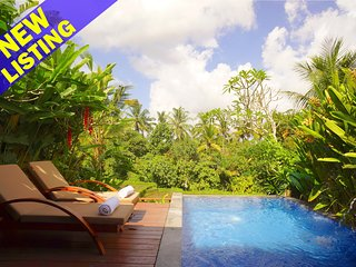 1 Bedroom Private Pool Villa, 10 Minutes to Central Ubud;