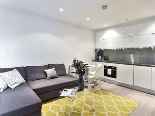 Modern 1bed in South Kensington