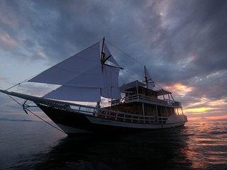 CarpeDiem premium phenisy boat