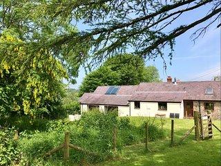 Kite Cottage (Cerrig Bach)
