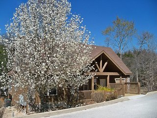 Woodland Romance Cabin, Pets, Fishing, Golf, Indoor Pool, Playground, FUN!