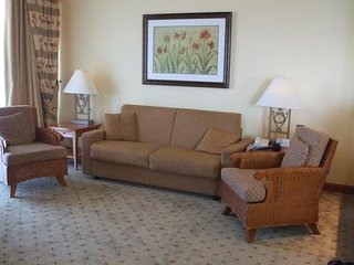 2 bedrooms 2 baths sleeps 6,with full amenities.Time share in a 5 * hotel