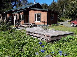 Raven's Nest cabin w/sauna, wood stove, BBQ, w/d, close to town