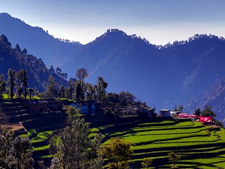 Yoga and Detox retreat in remote Himalayas.
